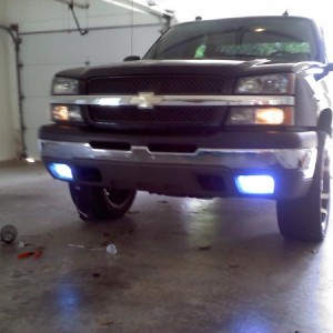 Xentec 8000k Hids in the fogs